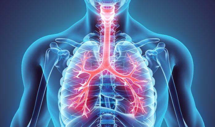 Porto Seguro dá dicas de como prevenir doenças respiratórias no inverno