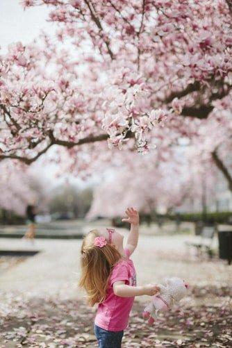 Prepare a sua casa para a primavera!