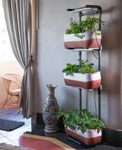 Já pensou em ter uma horta no seu apartamento?